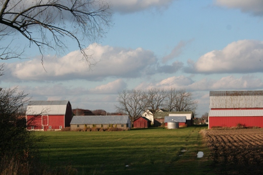 farmland in november